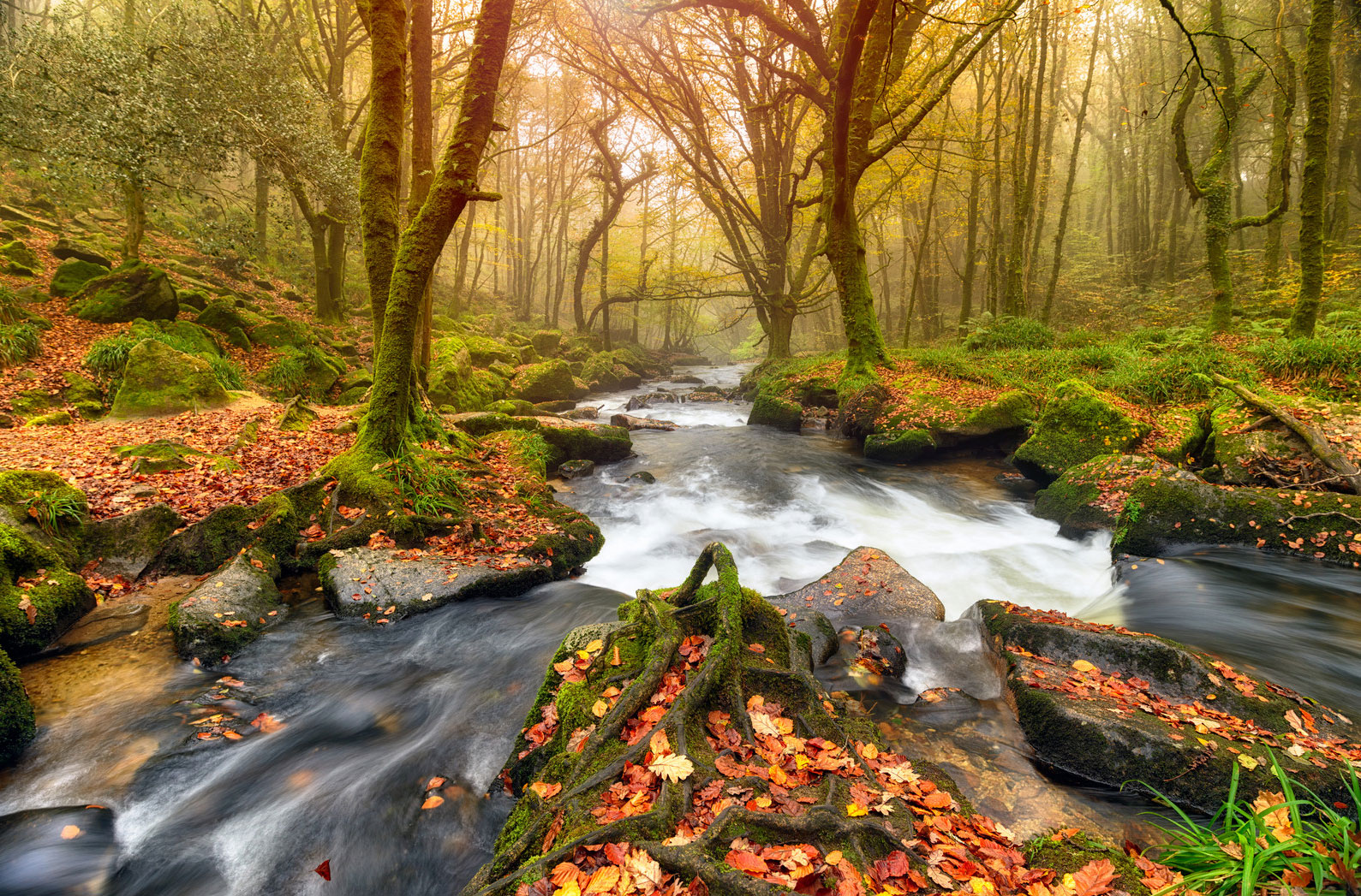 The Best Things To Do In Cornwall In The Autumn Cornwall