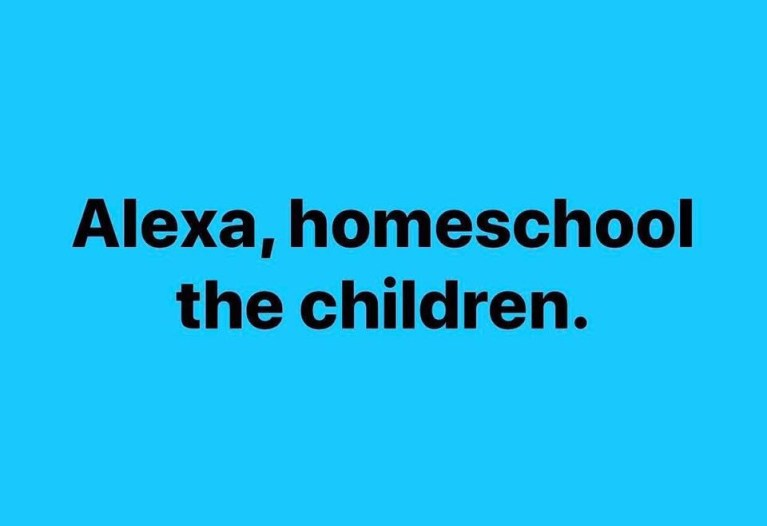 Alexa – Homeschool the children