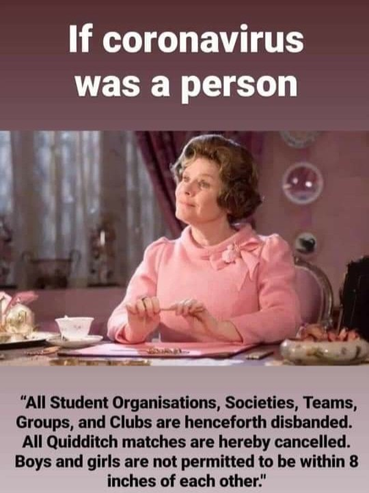If corona virus was a person – Professor Umbridge Harry Potter Meme