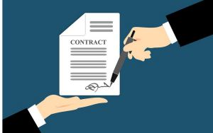 drafs and review contracts