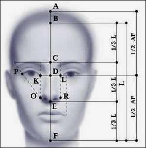 cranio e asimmetria