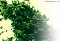 marihuana-5