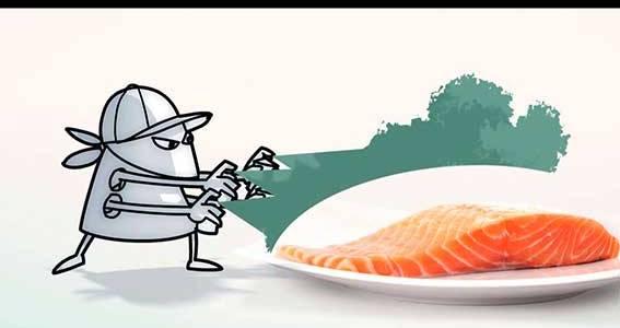4 factores clave para garantizar la inocuidad alimentaria