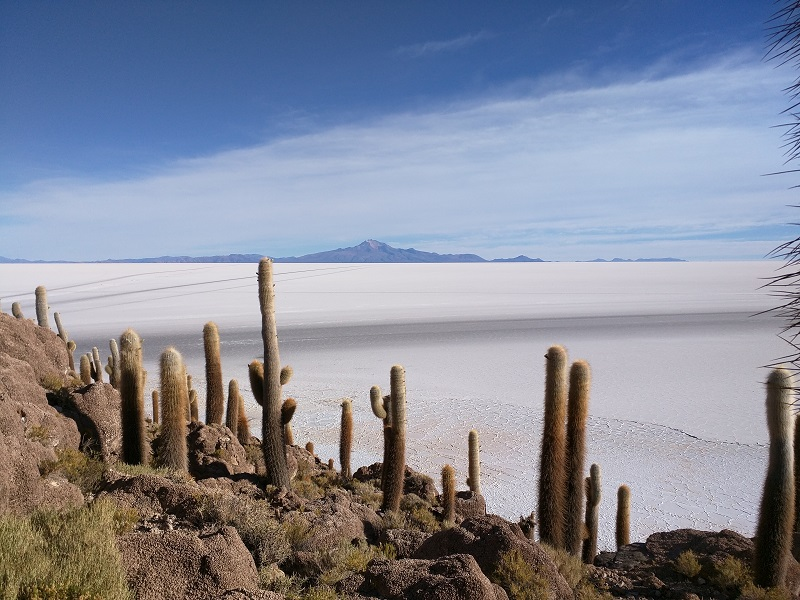 The Salar de Uyuni from Incahuasi Island