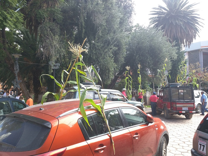 Cumpas in Bolivia. Cars decorated with corn stalks