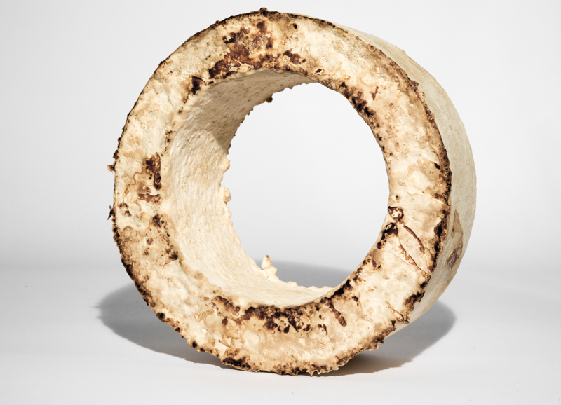 The Growing Lab - Mycelia ©Officina Corpuscoli | Maurizio Montalti - mycelium wheel1