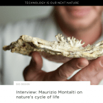 Press Article // Next Nature – Interview about Mycelium and the Cycling of Life
