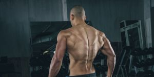 Do Powdered Proteins Hurt? – The Expert Response
