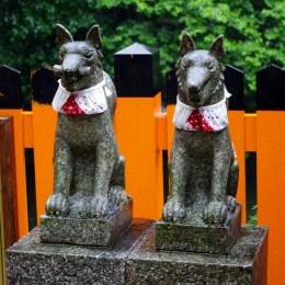 Fushimi_Inari_Shrine_Kyoto_Imgp1627