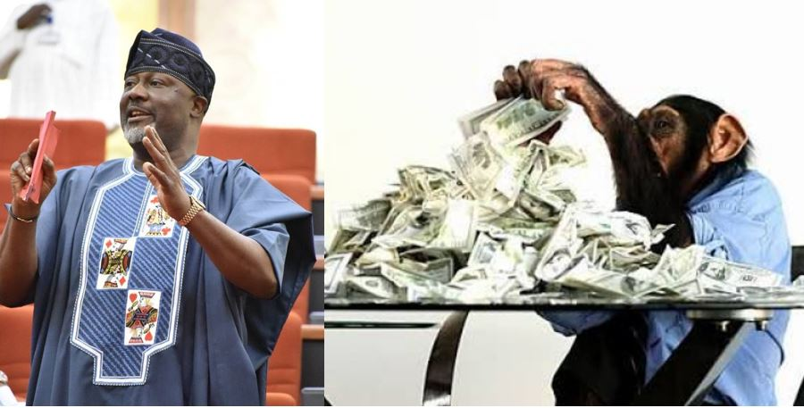 Dino Melaye reacts to viral reports of a Monkey stealing N70 million