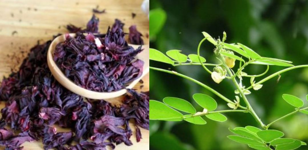 13 Yoruba herbs you may not know and their uses