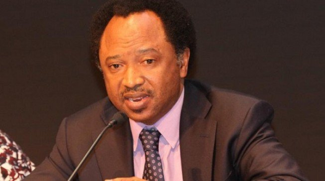 """""""I can never be part of any plot to impeach the senate president"""" – Shehu Sani speaks on being part of plot to impeach Saraki"""