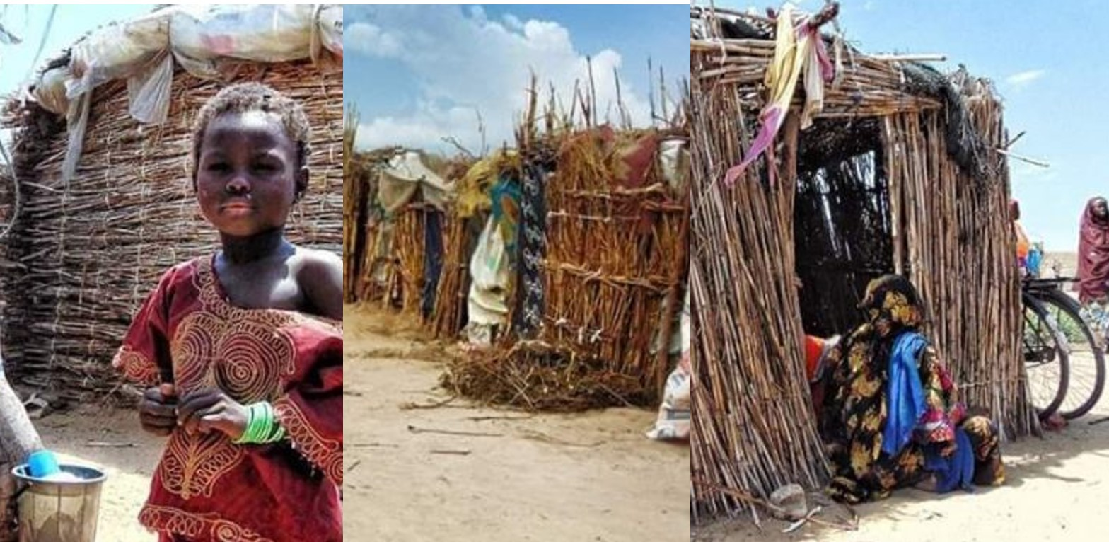 """Man appeals to Borno politicians to give him billboards so the IDPs can use them to cover their """"homes"""" (Photos)"""