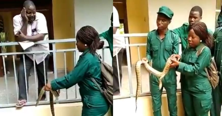 Nigerian lecturer makes students to carry a snake as part of their continuous assessment (Video)