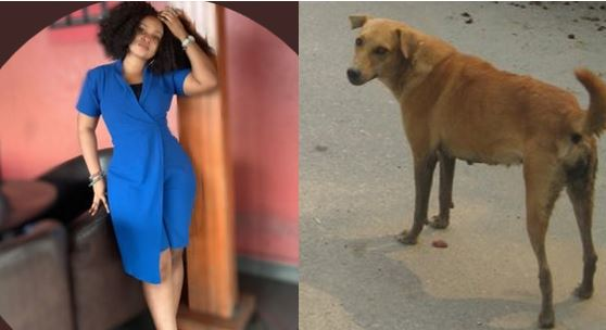 Nigerian lady narrates how police asked her for the receipt of her dog