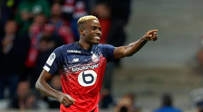 Super Eagles star, Osimhen bangs in another goal as Lille cruise in French Cup