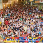 Carnaval Levino Ferreira