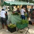 Sesc Ler Surubim promove Feira de Orgânicos