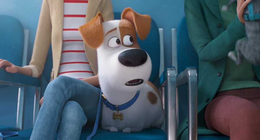THE SECRET LIFE OF PETS | Watch MAX Trailer