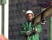 Immigrati al lavoro (Emblema)
