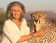La biologa Laurie Marker. Il Ceetah Conservation Fund, la fondazione da lei creata, sta cercando di salvare questi felini dalla caccia da parte degli allevatori della Namibia