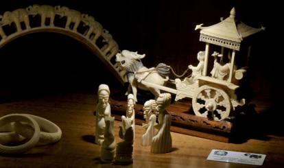 Aperto il Macri, museo dei crimini ambientali