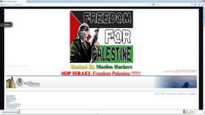"""Il sito del comune con il messaggio """"Freedom for Palestine"""""""