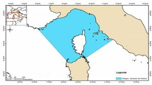 l'area di mare interessata dal santuario Pelagos