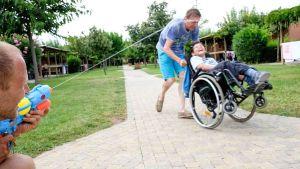 disabile pappasole