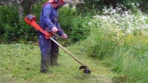 taglio-erba-giardiniere