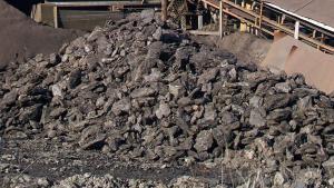 un cumulo di lignite (carbone)