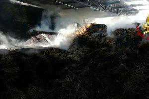 Belpasso, fiamme dentro un capannone in località Altarello: lievi danni alla struttura