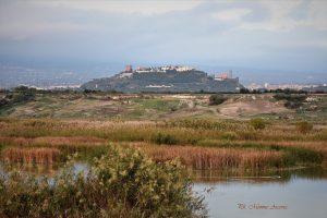 Paternò, Archeoclub 'Hybla Major' promuove restituzione di oltre 200 reperti conservati a Catania: Soprintendenza avvia procedure
