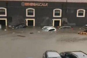 Maltempo a Catania, il 'vascone' di Piazza Alcalà: automobilisti bloccati dentro le vetture (VIDEO)
