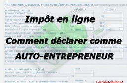 Auto-entrepreneur : comment remplir la déclaration d'impôt sur les revenus? Montant, case et accès au formulaire 2042C.