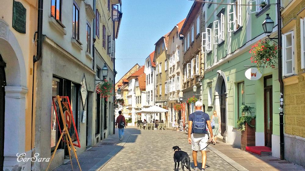 La città vecchia di Lubiana