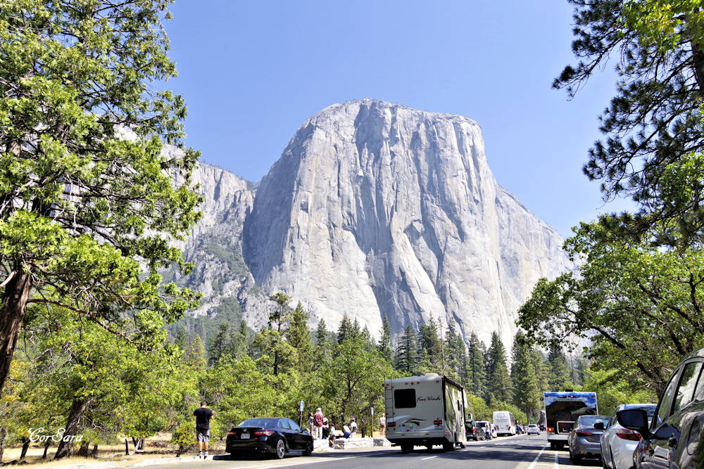 Yosemite National Park - (C) Sara Zammarini 2018