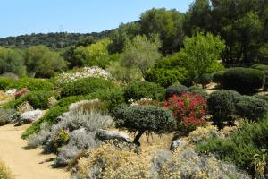 Parc Saleccia Corsica