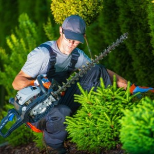 corso giardiniere roma operatore del verde