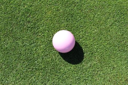 Pink Jack - Ladies Charity 2015