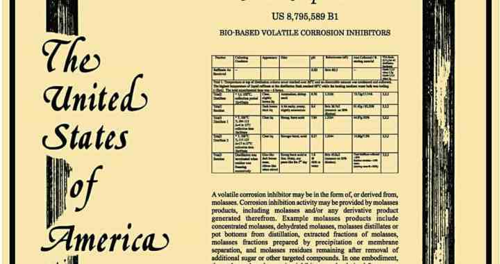 US Patent Picture