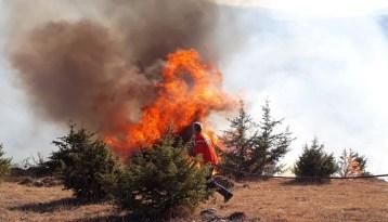 Çorum'da korkutan orman yangını!