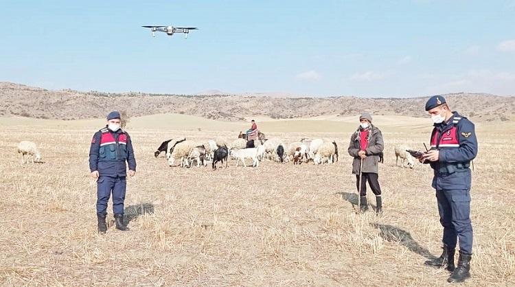 HAYVANLAR DRONE YARDIMIYLA BULUNDU