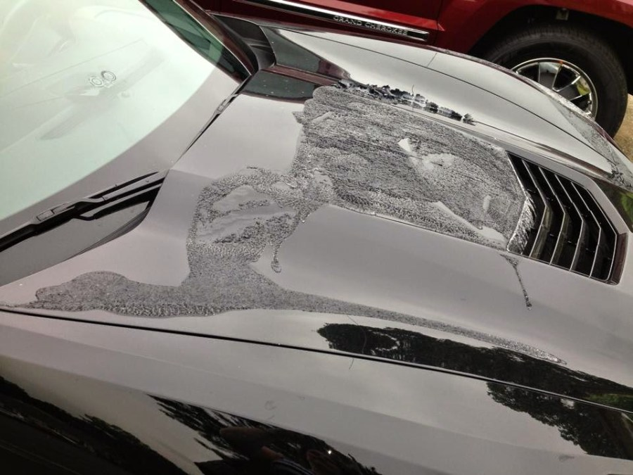 C7 Corvette Stingray Attacked with Paint Stripper