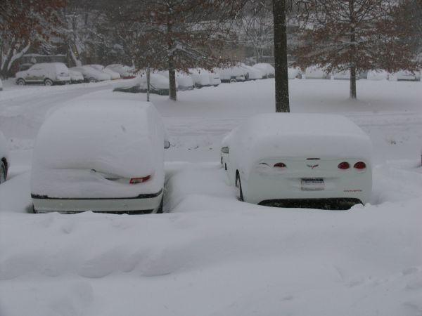 snow_2_2010_5177929809dde47eed567e51db0183f93bdf817b