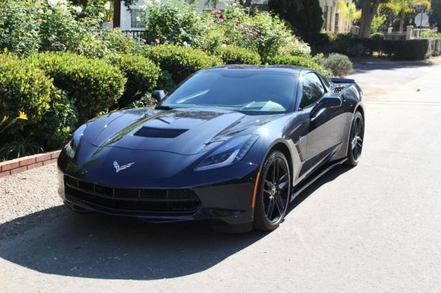 Corvette Festival of Speed (4)