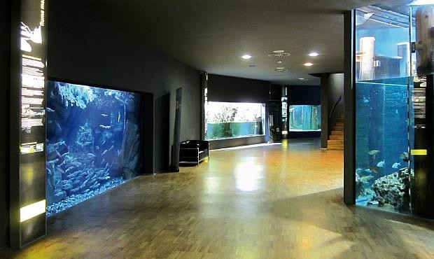 Acquario Civico di Milano – Ingresso gratuito ogni prima domenica del mese