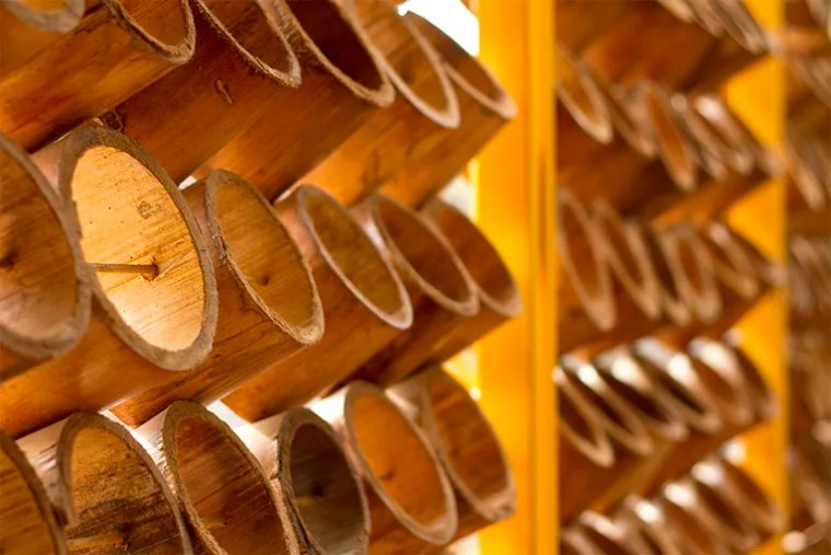 detalle bambu