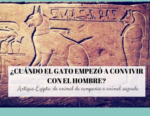 origen gato hombre egipto