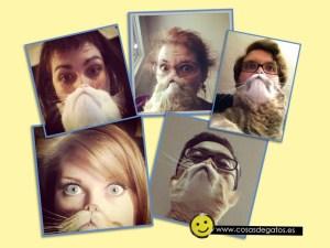 Hacerse fotos con tu gato que parezca una barba es la nueva moda